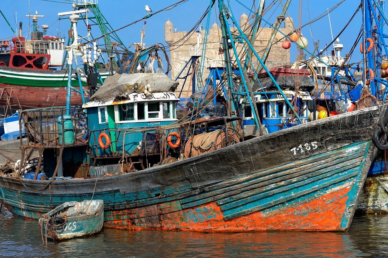Fischerboote im alten Hafen von Essaouira