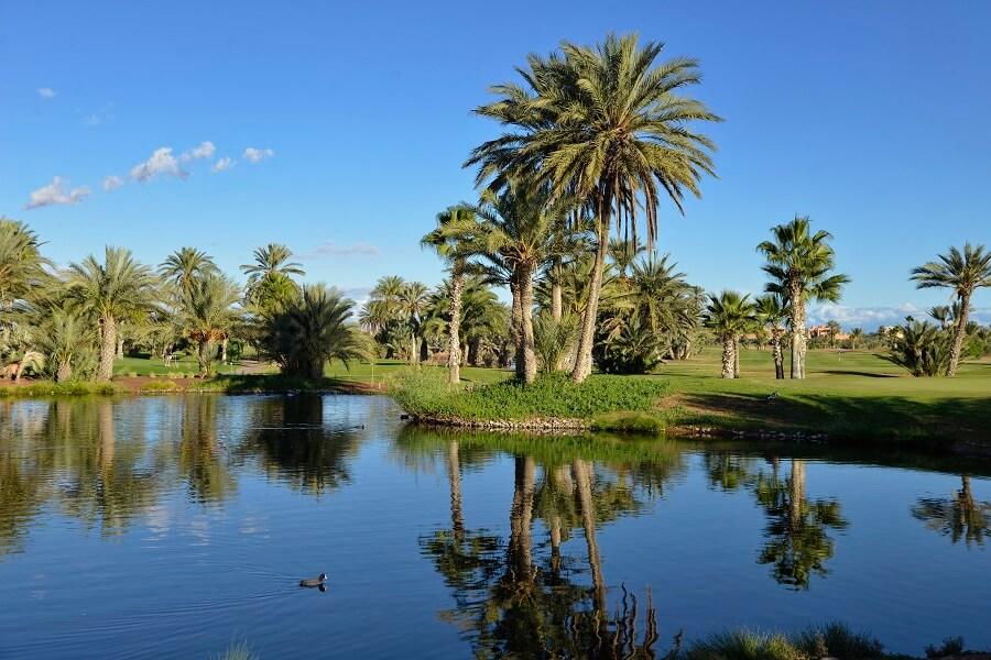 Die Golfanlage Amelkis in Marrakesch
