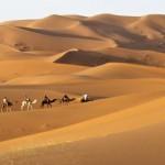 Wüstentrekking mit dem Hotel La Maison Nomade in Marrakesch