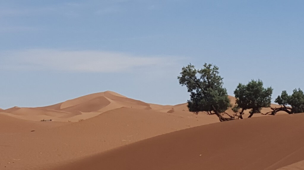 Wüstentour in Marokko zur Düne von Erg Cheggaga mit dem Hotel La Maison Nomade in Marrakesch