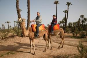 Wüstenähnliches Feeling in der Palmeraie von Marrakesch