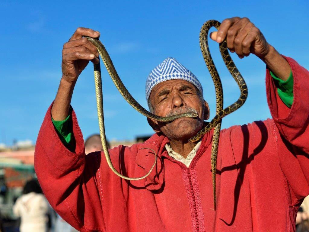 Schlangenbeschwoerer Djema el Fna Marrakesch