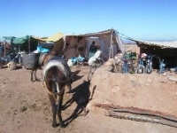 berbermarkt2