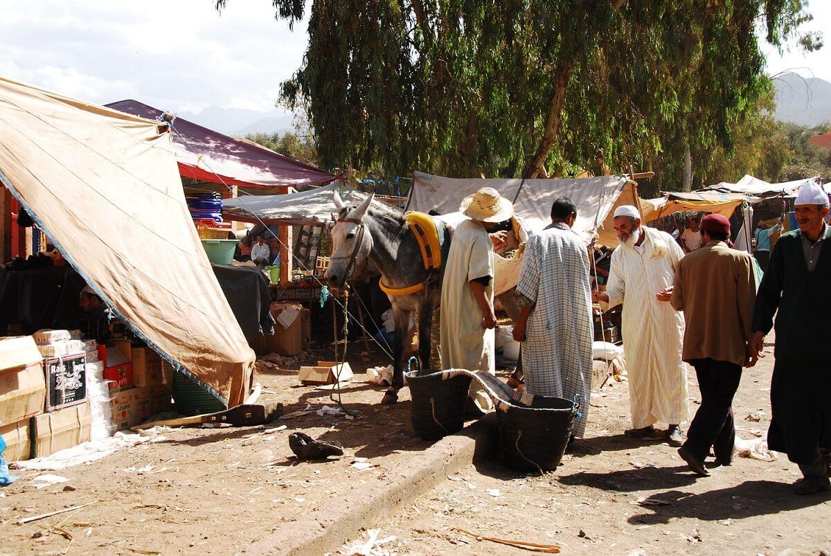 Mit dem Riad Marrakesch und Marokko Reisen zum Berber-Markt am Fuße des Hohen Atlas in Asni