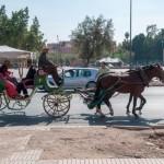 Mit der Pferdekutsche die Stadt entdecken