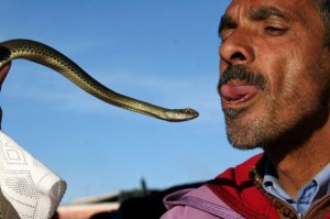 Mann mit Schlange