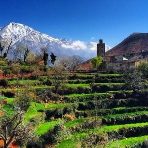 Tagesausflug von den Unterkunft Hotel La Maison Nomade in das Ourikatal bei Marrakesch