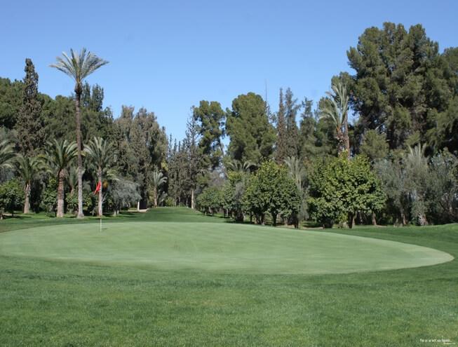 Royal Golf Club in Marrakesch mit altem Baumbestand