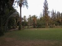golfplatz-royal-de-marrakech