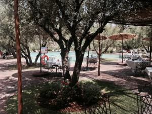 Garten mit Schwimmingpool