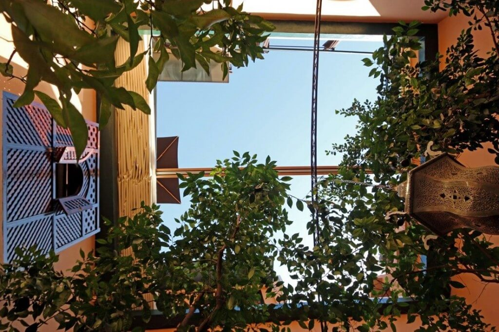 Blick von EG nach oben. Sie sehen die Orangenbäume und das automatisch zu schließende Dach