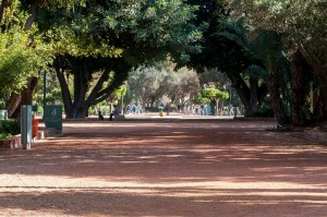 Park Marrakesch