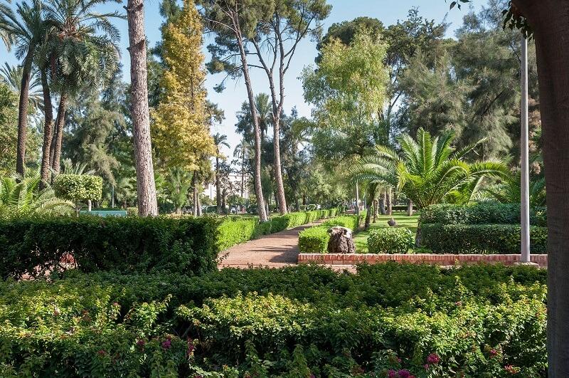 Cyber Park mit seiner Pflanzenpracht