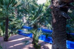 Blaue Treppen und Palmen