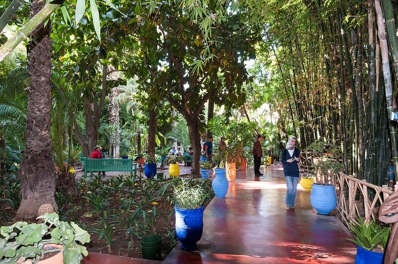 Detailansicht des Garten Majorelle in Marrakesch