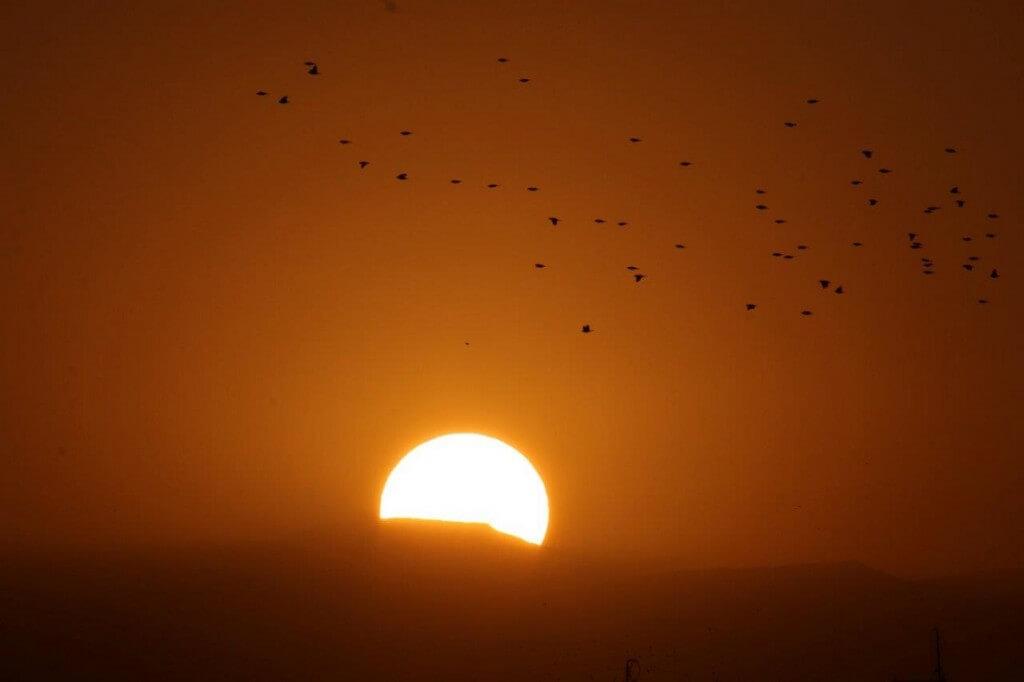 Riad Marrakesch Empfehlungen, Störche über dem Abendhimmel in Marrakesch