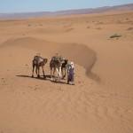 Mehrtagesausflug durch die Wüste Erg Chegaga