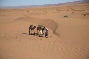 Mann mit Kamel in der Wueste