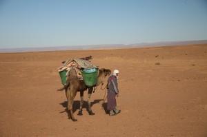 Mann mit Kamel in Wueste