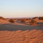 Dünenlandschaft Erg Chegaga