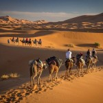 Marokko Reisen - Dromedartrekking
