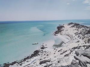dracheninsel-in-dakhla-westsahara