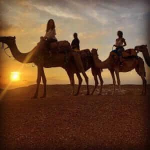 Tagesausflug Wüstencamp