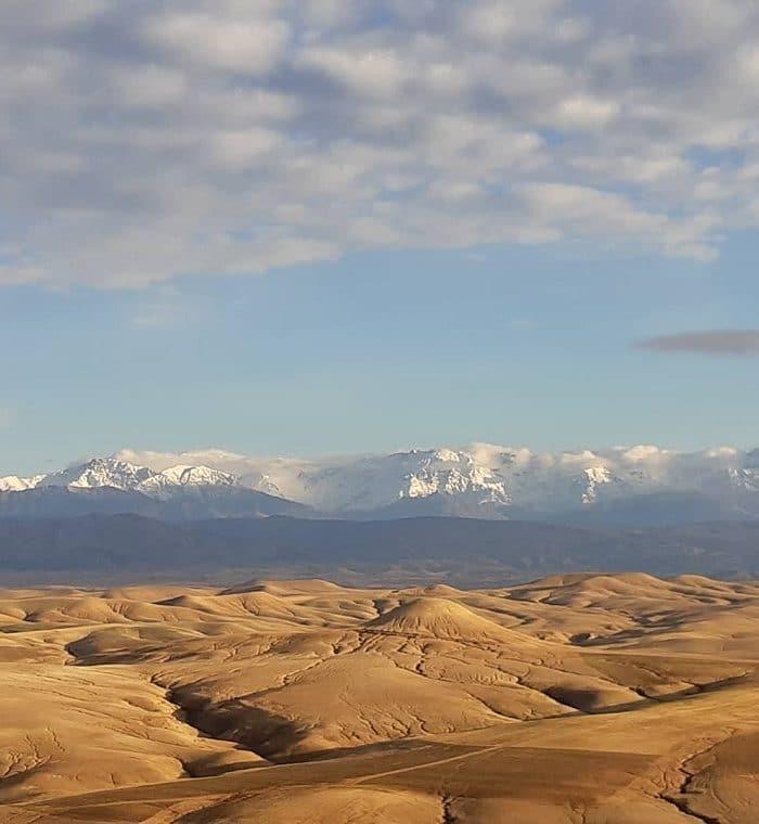 Tagesausflug Wüstencamp mit Wüstenfeeling